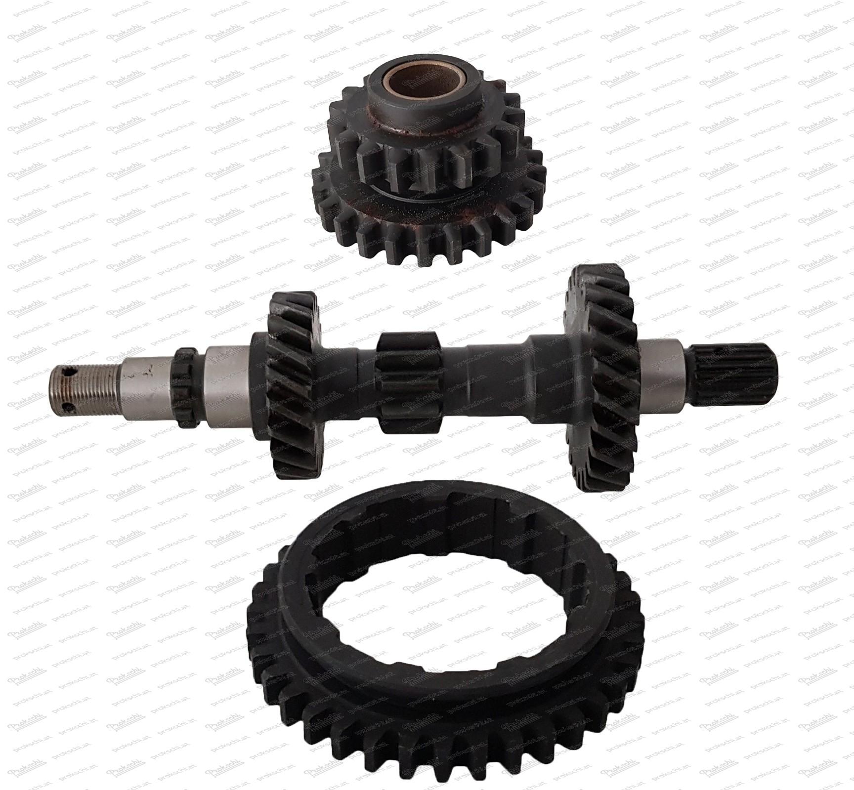 Reparatursatz Getriebe - 1.Gang und Rückwärtsgang Fiat 500 N-D-F-L