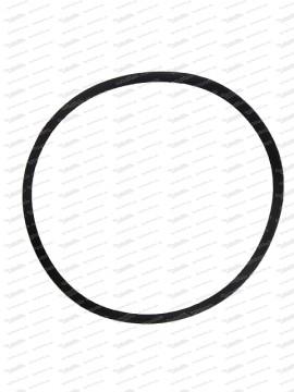 O-Ring 101,2x3,5mm für Ölschleuder